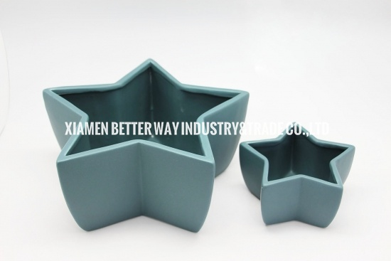 matt ceramic succulent pot