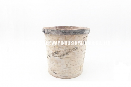 birch covered vase